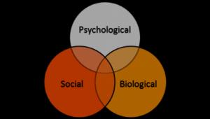 Το βιοψυχοκοινωνικο μοντελο Ψυχοθεραπεια Ψυχαναλυση